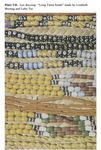 Plate VD - Lun Bawang Beads