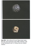 Plate IIB - Beads from the African Burial Ground, New York City: A Preliminary Assessment